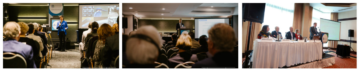 ADRIC 2019 Conference (Victoria, BC) : Realizing ADR's Full